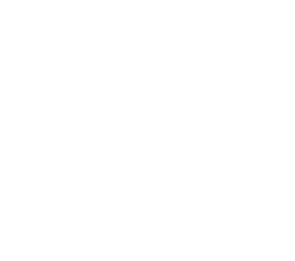 wild idea lab logo